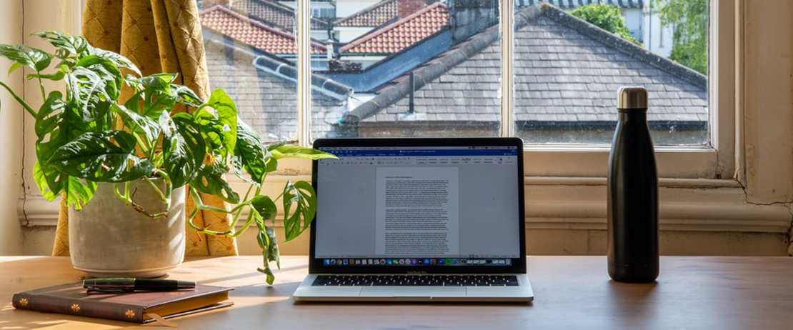 A plant, laptop, tumbler, notebook, and pen on a table in front of a window