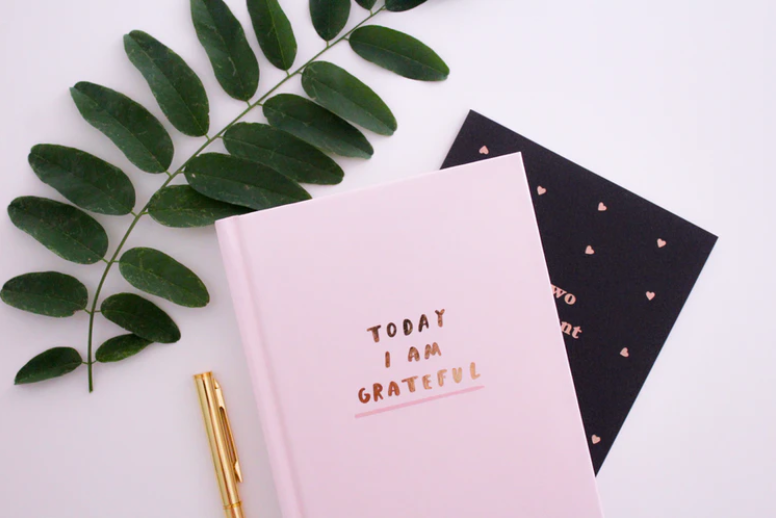 Leaves, a gold pen, and a set of notebooks with a gold foil print design